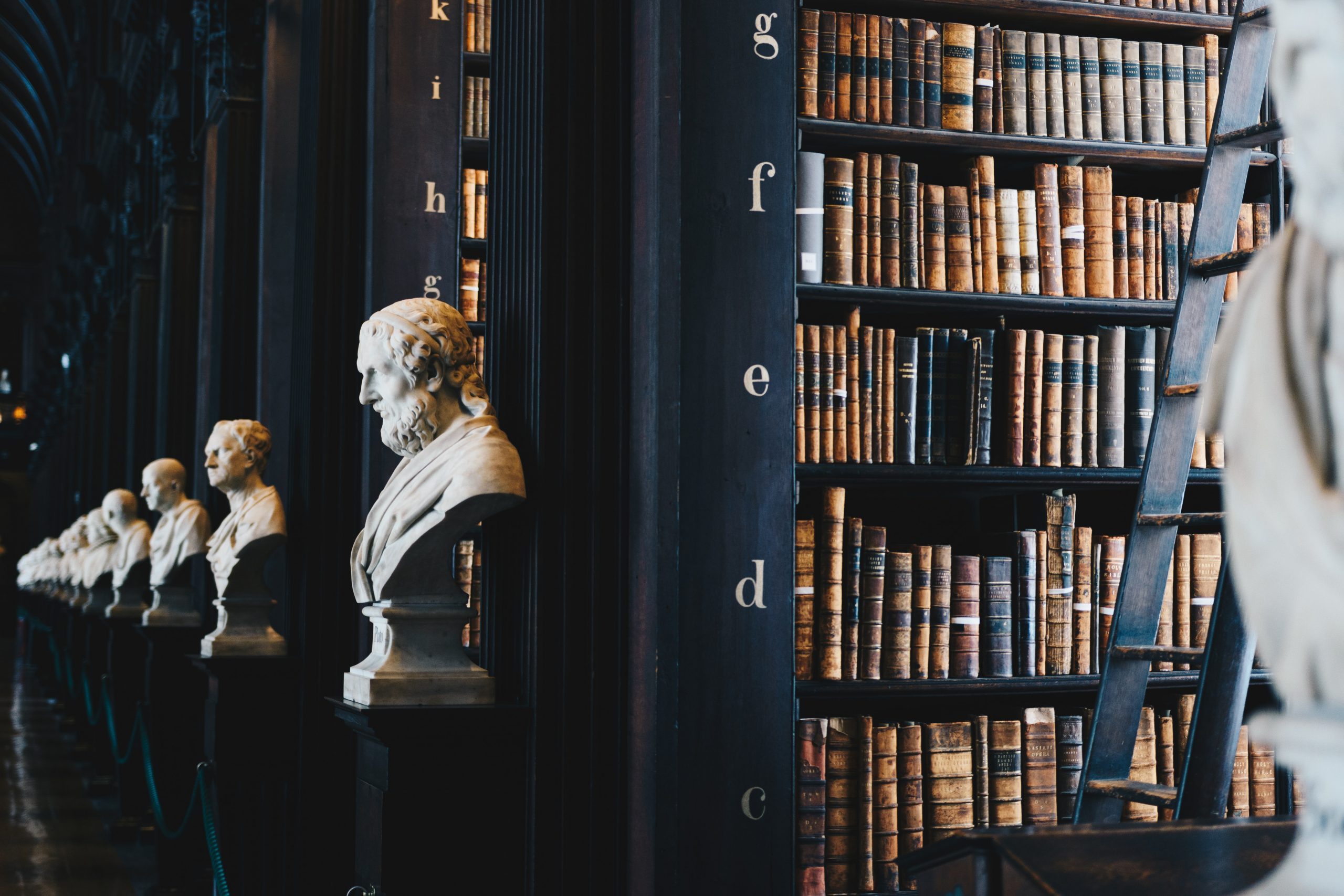 Library with books and head busts
